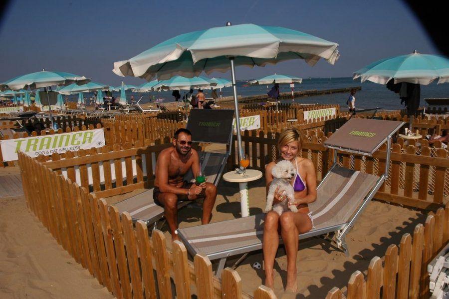 Doggy Beach