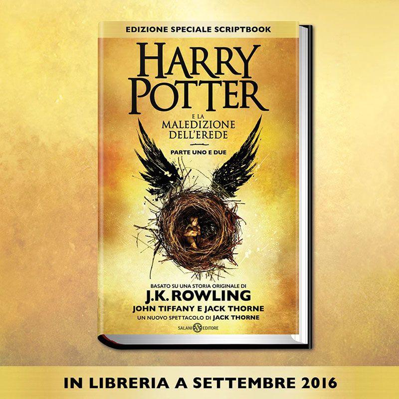 Harry Potter e la maledizione dell erede1