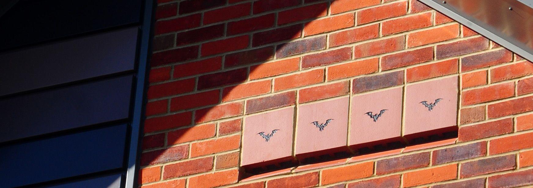 Addio zanzare, con la casetta fai da te per pipistrelli