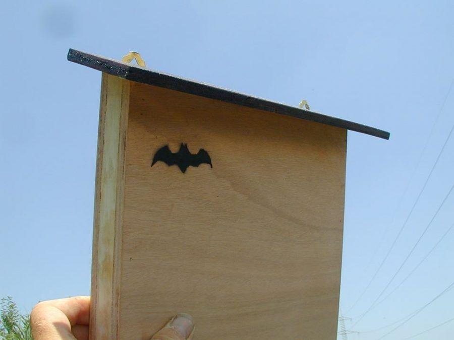 batbox2