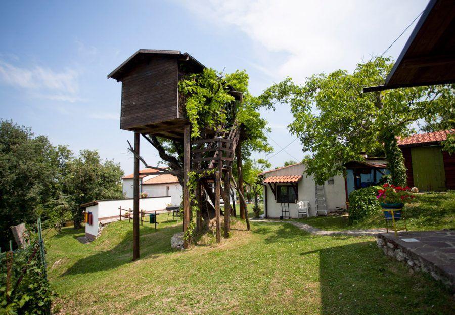 Le case sugli alberi in italia bigodino - Costruire case sugli alberi ...