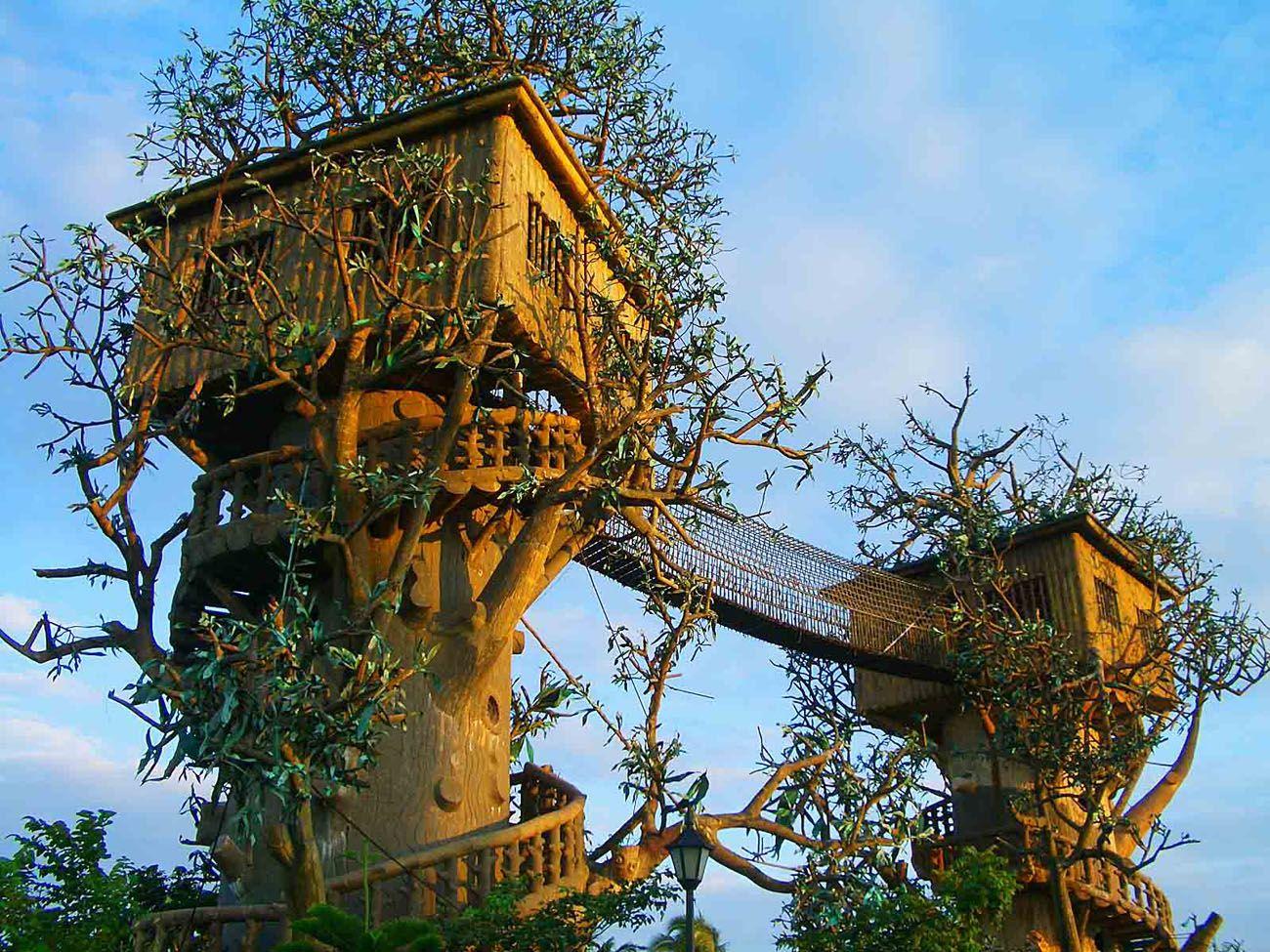 Le case sugli alberi in Italia | Bigodino
