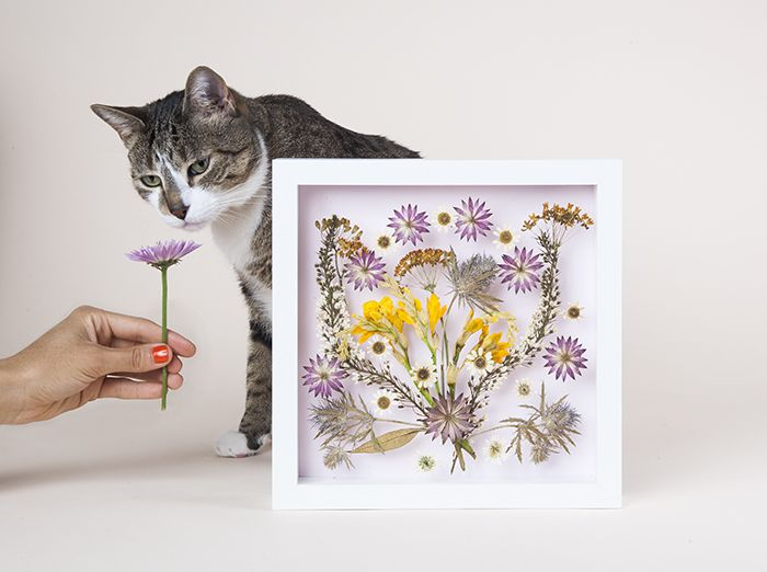 quadri artistici con fiori