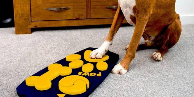 Telecomando per cani