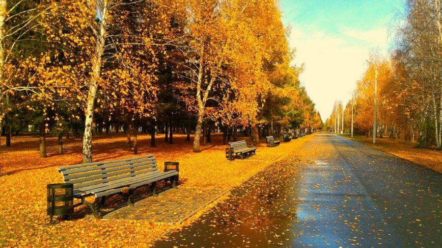 ...possono esserci paesaggi pazzeschi in autunno in giro per il mondo...