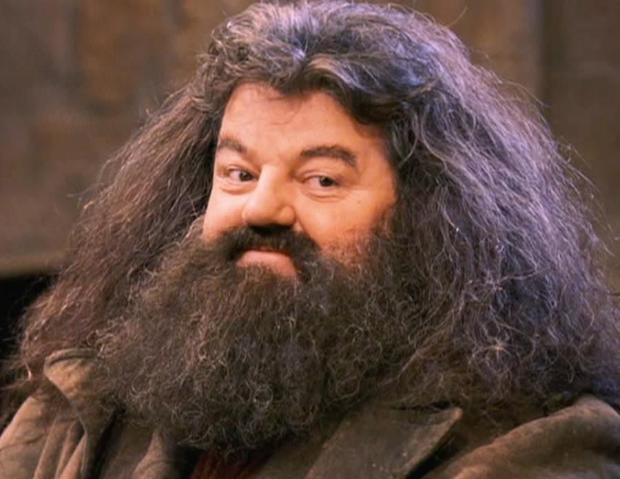 ...anche Hagrid ha la barba... diteci che è gnocco anche lui!