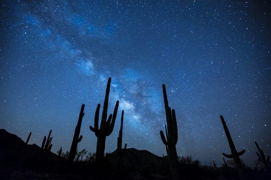 Dove vedere le stelle cadenti