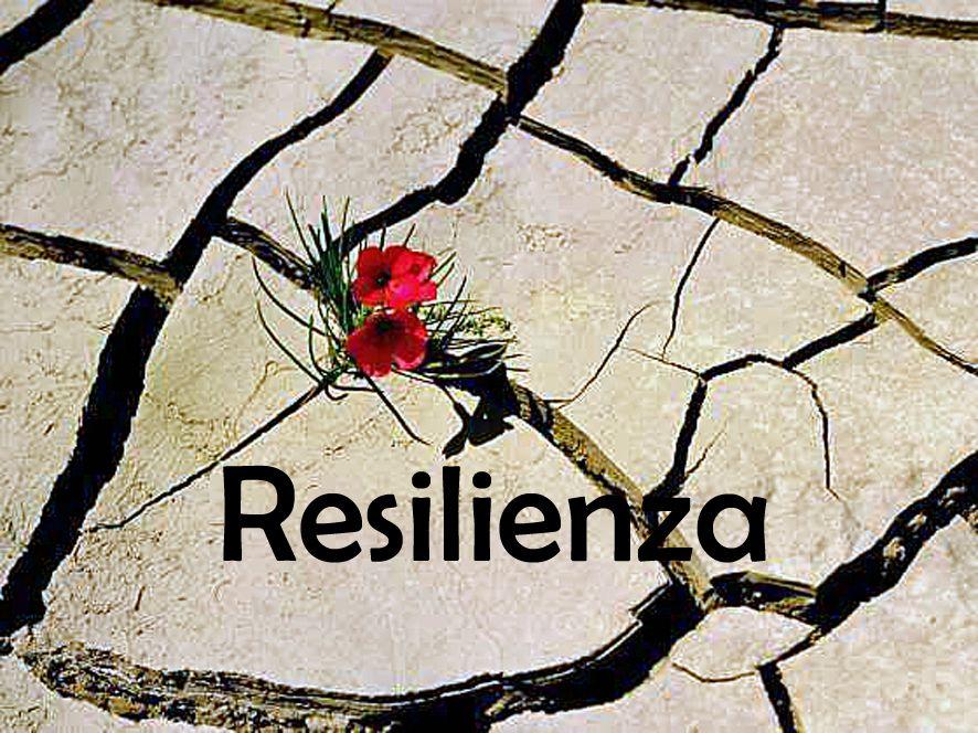 Resilienza, come reagire alle avversità