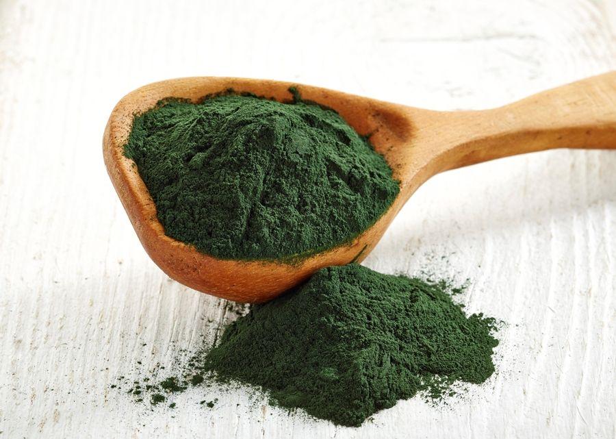 Spirulina algae powder