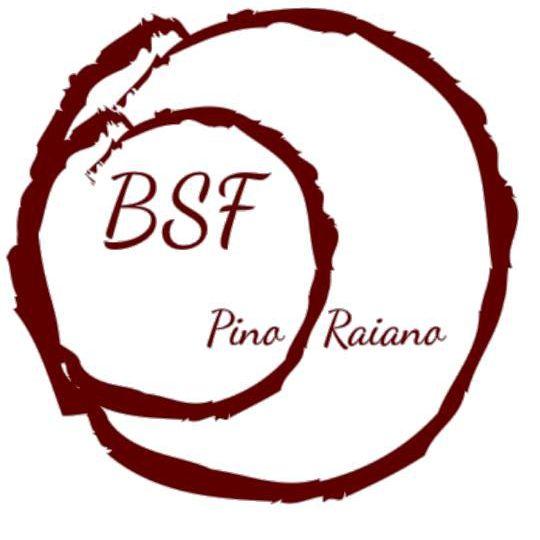 Beauty Salon Pino Raiano