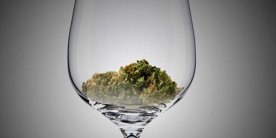 Sommelier della cannabis