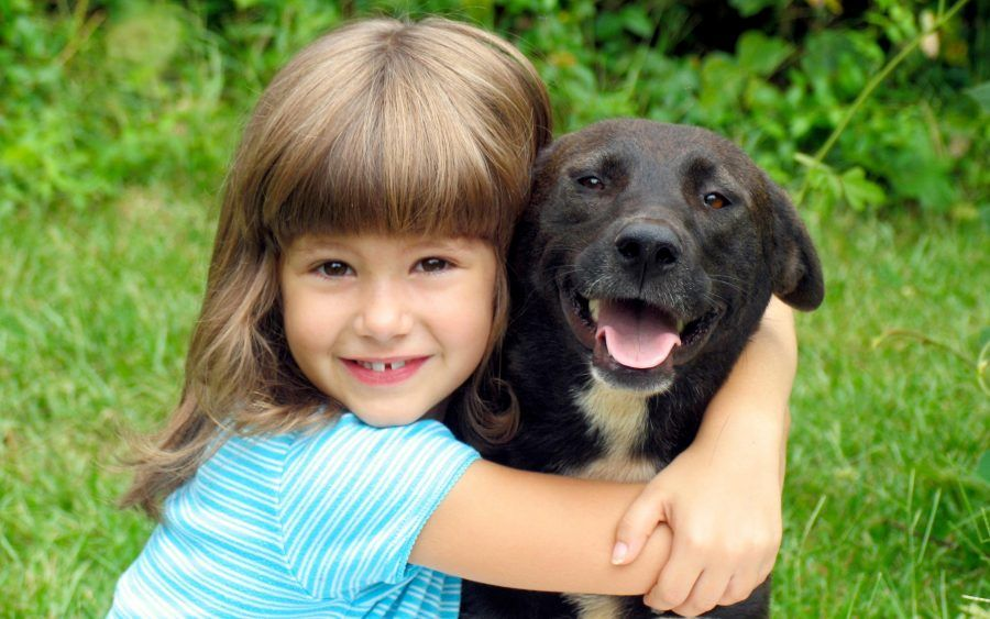 insegnate ai vostri figli l'amore per i cani!