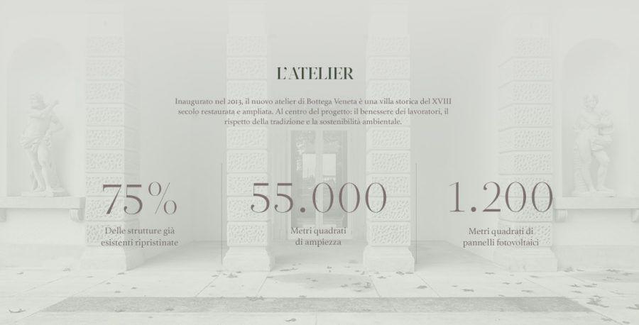 bottega-veneta-infografica10