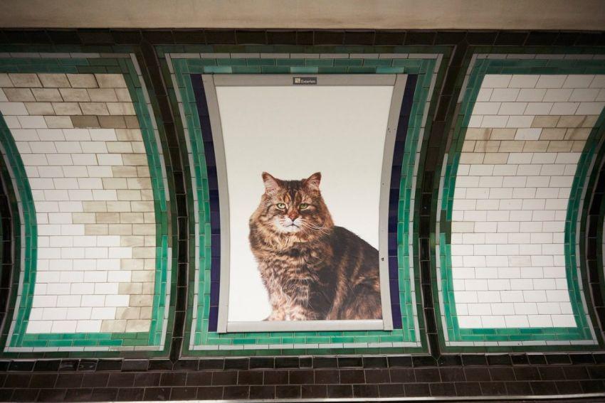 Ecco come appare la stazione di Clapham Common