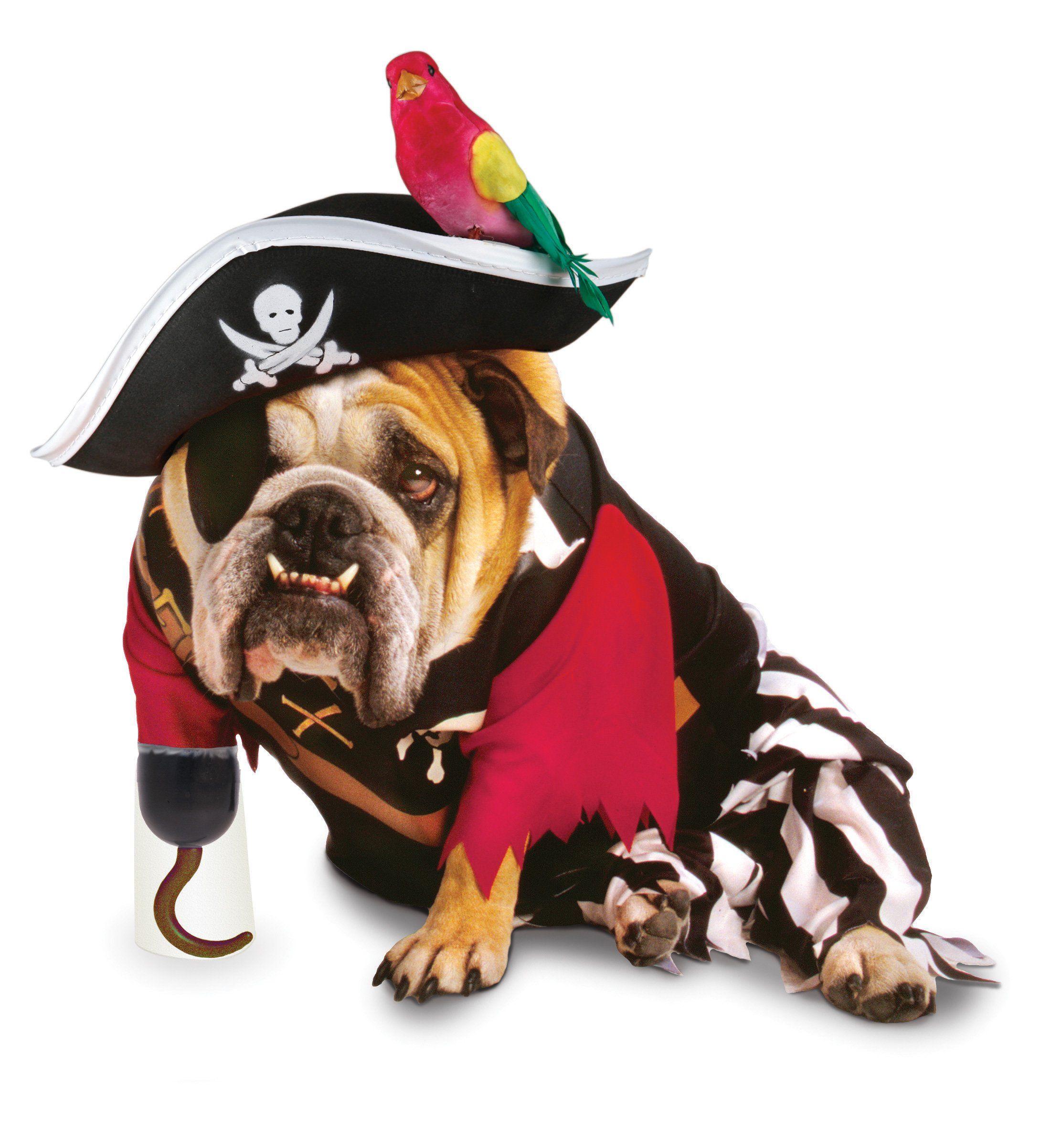 Costume Halloween cane pirata