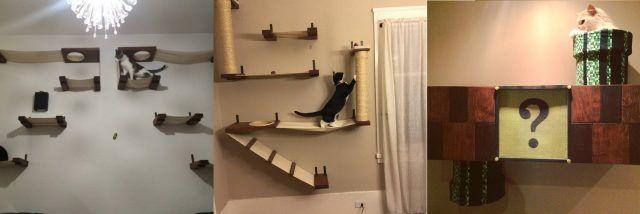 Ecco l 39 arredamento perfetto per chi vive con un gatto for Arredamento per gatti