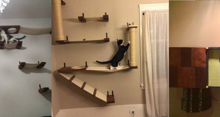 Ecco l 39 arredamento perfetto per chi vive con un gatto for Parete attrezzata gatti