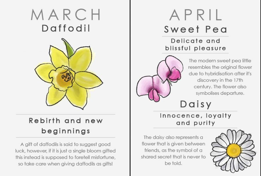Oroscopo floreale: marzo e aprile