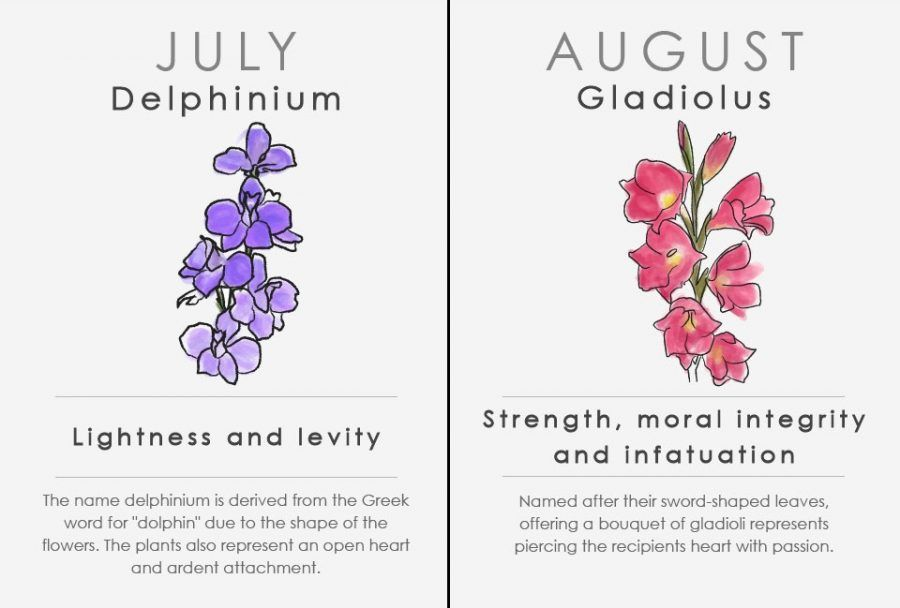 Oroscopo floreale: luglio e agosto