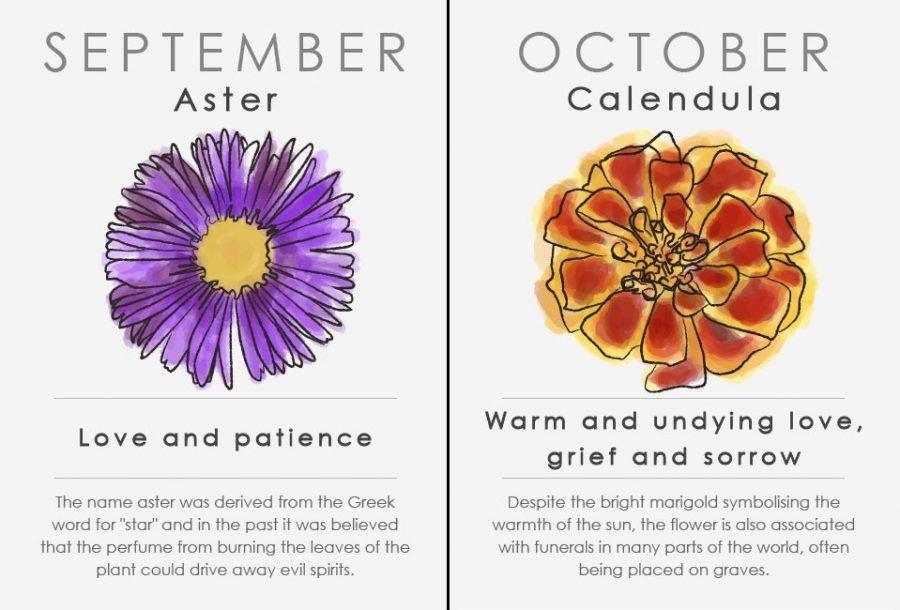Oroscopo floreale: settembre e ottobre