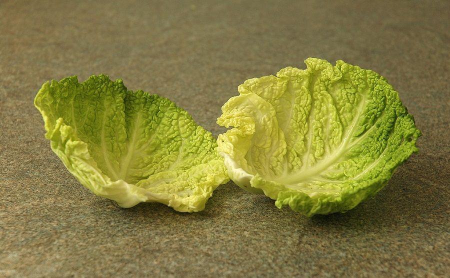 Le foglie di cavolo sono utili per creare impacchi antidolorifici