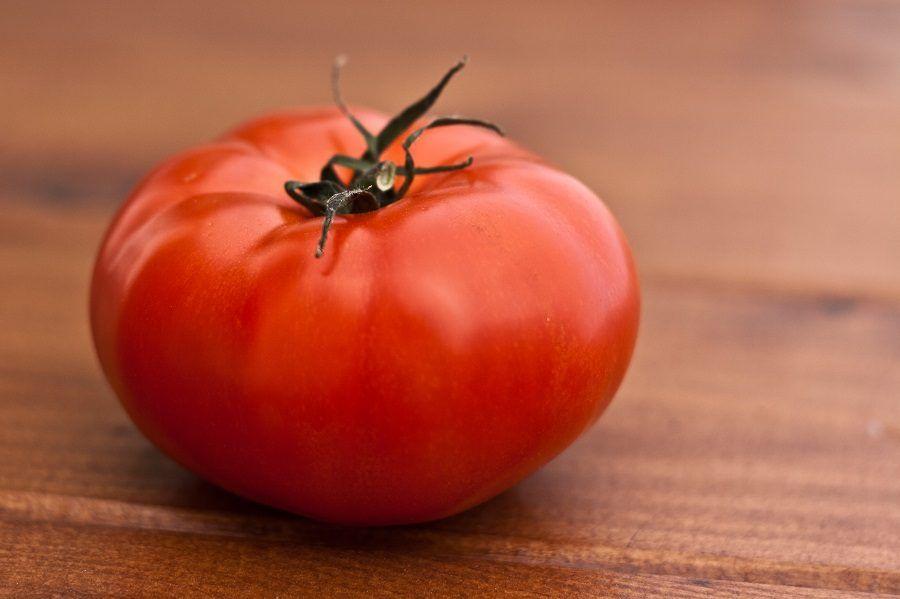 Pomodori più gustosi se non tenuti in frigo