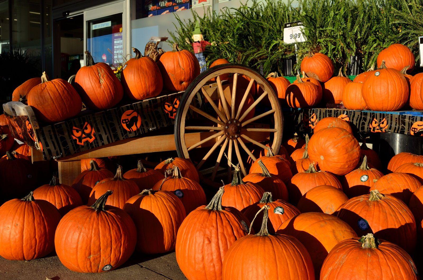 5 modi creativi e originali per decorare le zucche di Halloween