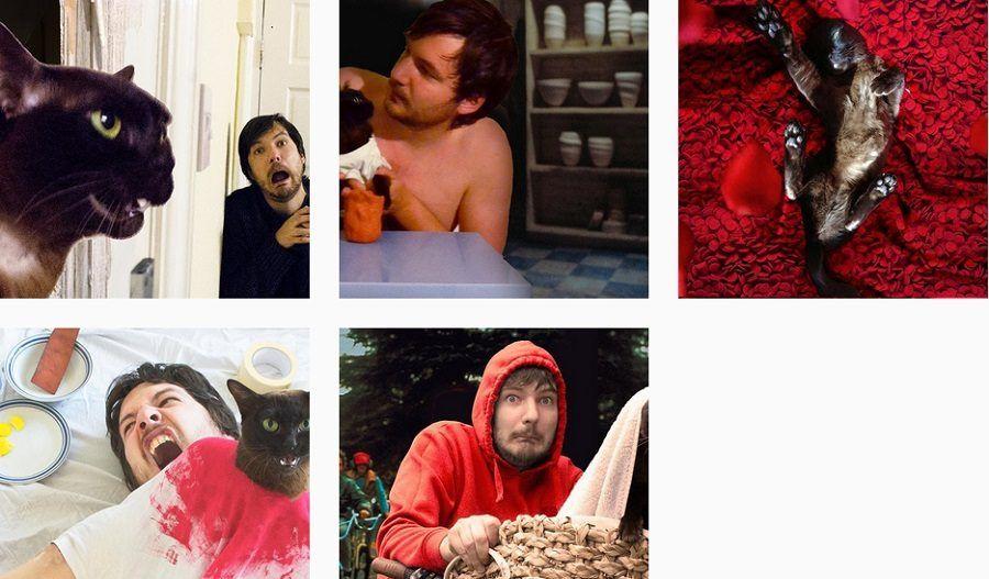 Gatti protagonisti di scene di film su Moviecats