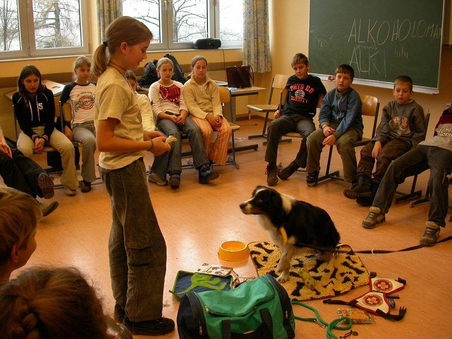Sessione di educazione del cane