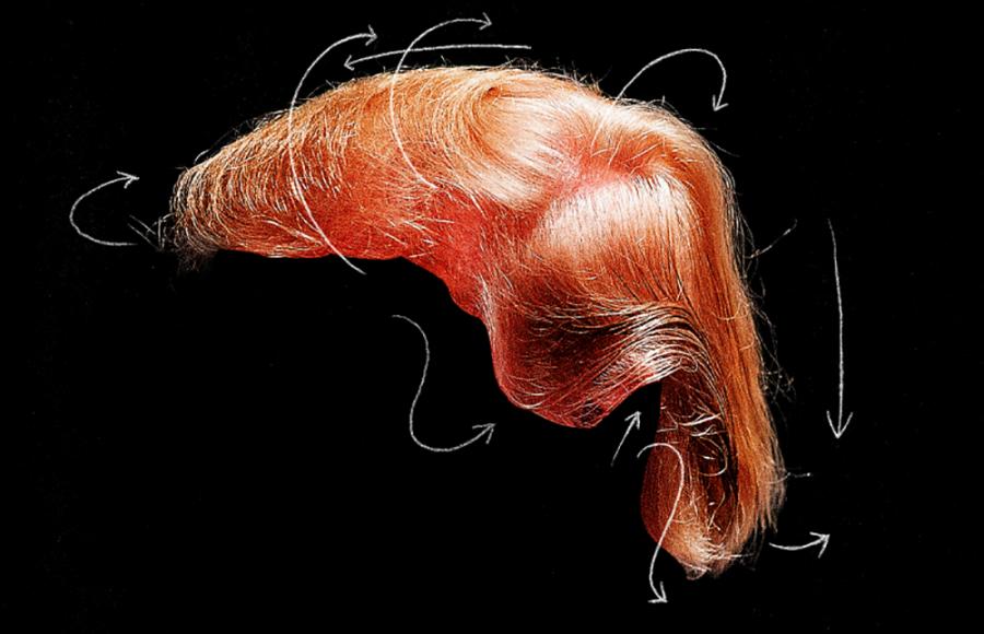 dimostrazione parrucchino trump