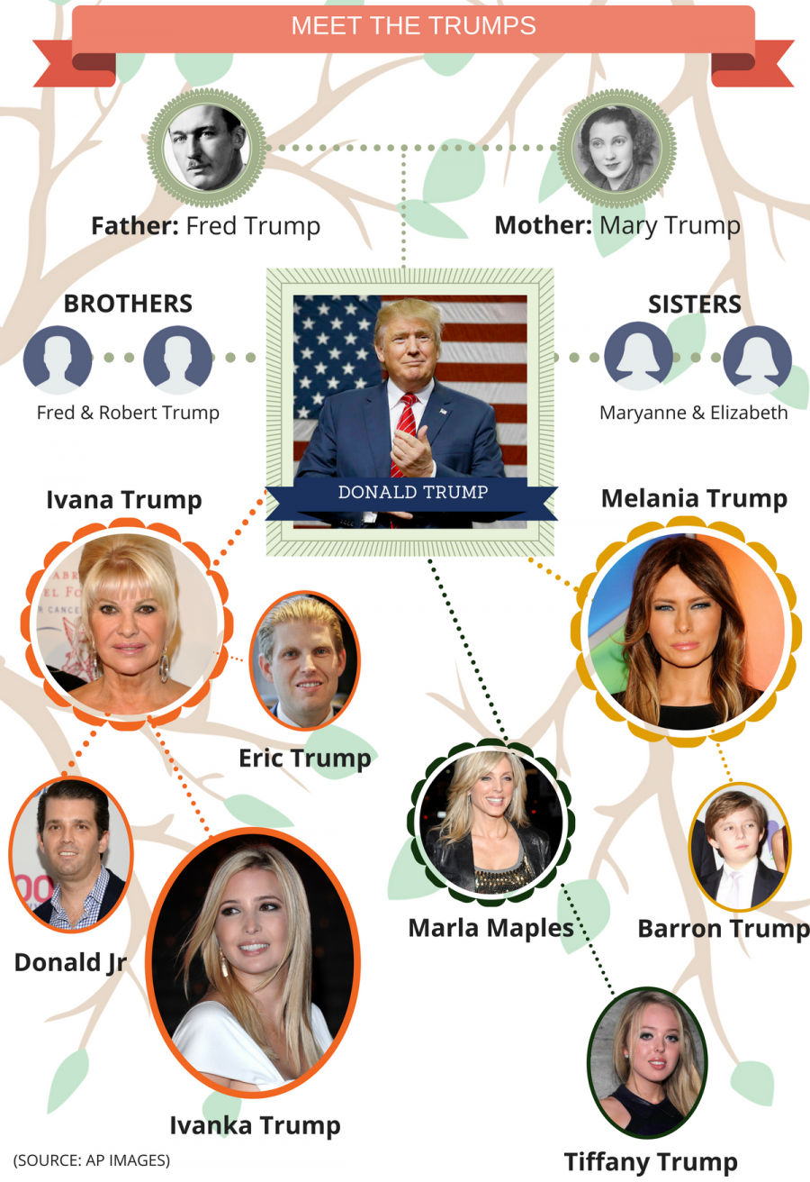 genealogia trump