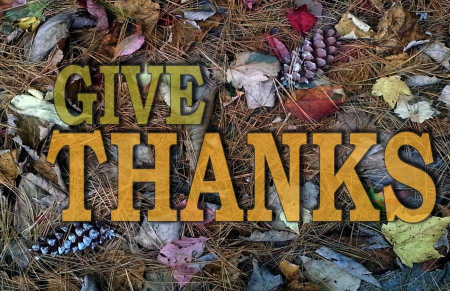 Buon Thanksgiving Day!