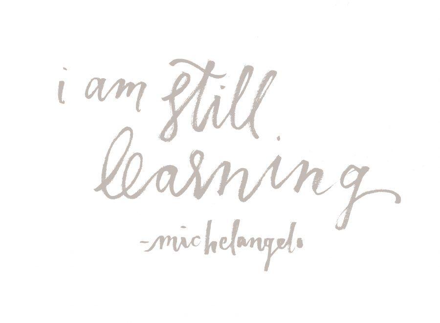 ...se sta imparando Michelangelo, figuratevi io...