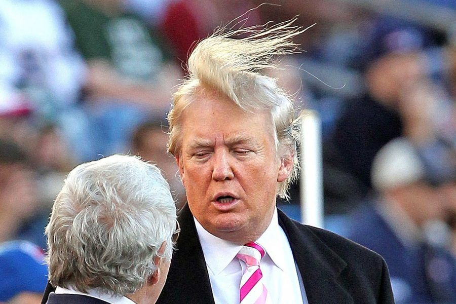 t-donald-trump-loses-fight-to-windmill