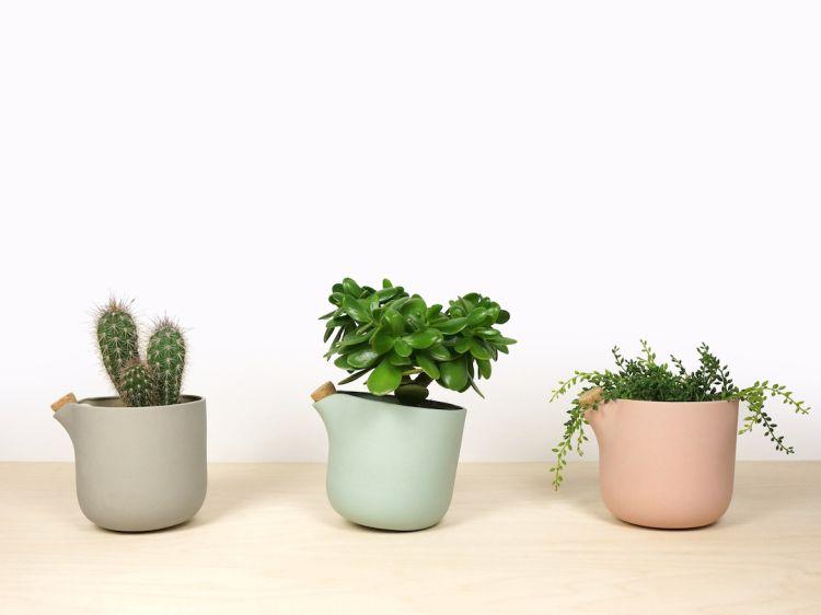 Il vaso che avvisa quando la pianta ha bisogno di acqua