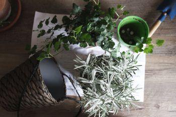 Idee geniali per decorare i vasi