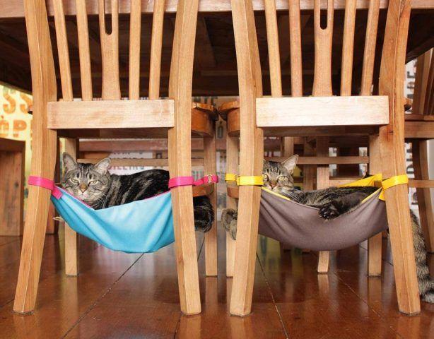 Cucce nascoste sotto le sedie DIY