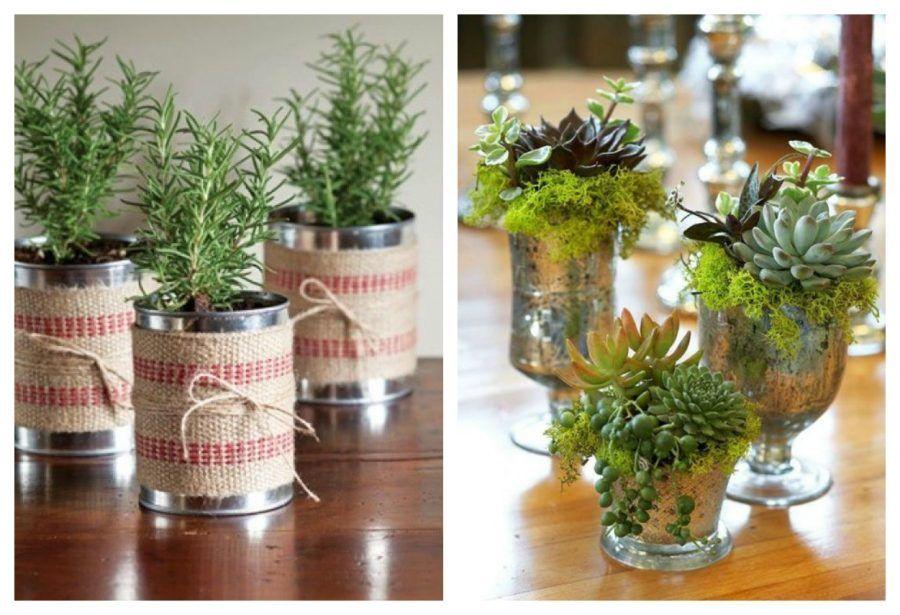 decorare-a-natale-con-le-piante