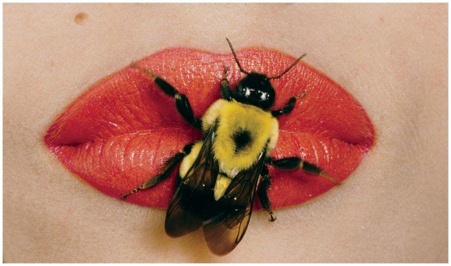 apiiiiiiCollage