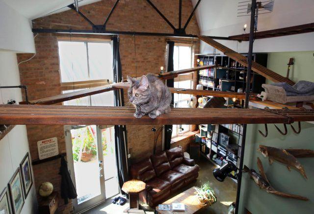 Percorsi di mensole ideali per chi ha i soffitti molto alti