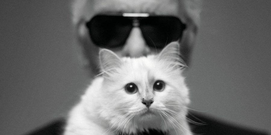 Choupette e Karl Lagerfeld