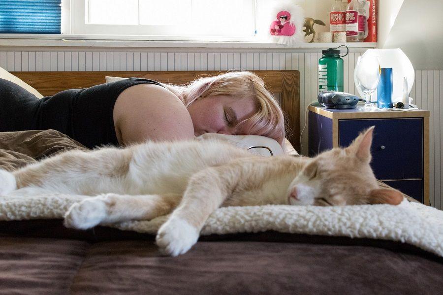 Potete dormire col gatto... tranquillamente!