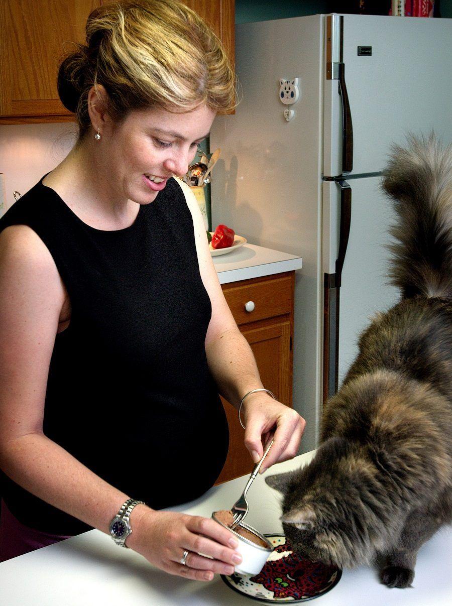 La convivenza fra donna incinta e gatto è possibile