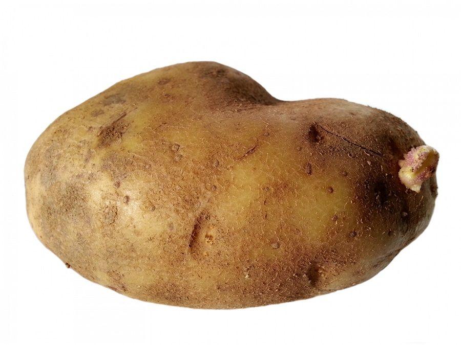 L'amido della patata aiuta a combattere i geloni
