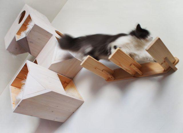 Mensole a parete per far divertire il nostro gatto