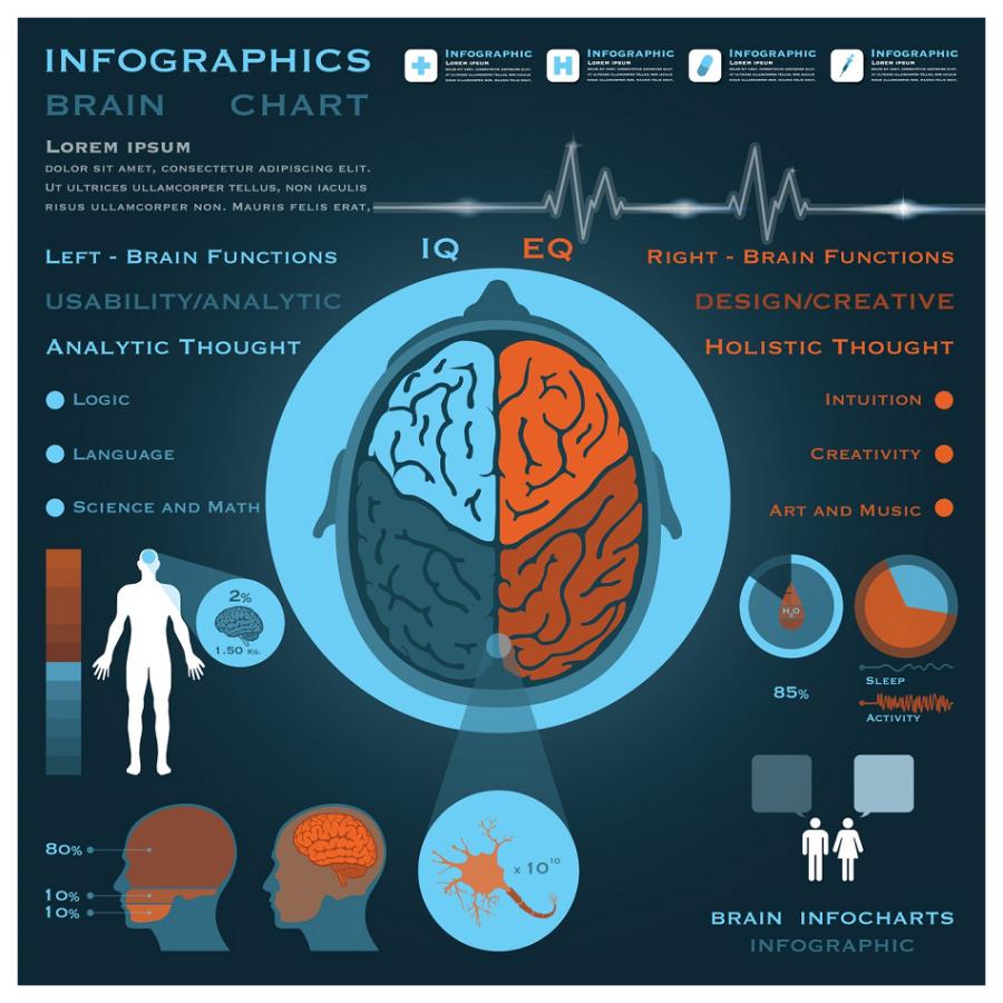 brain-chart-emotional-intelligence-smaller