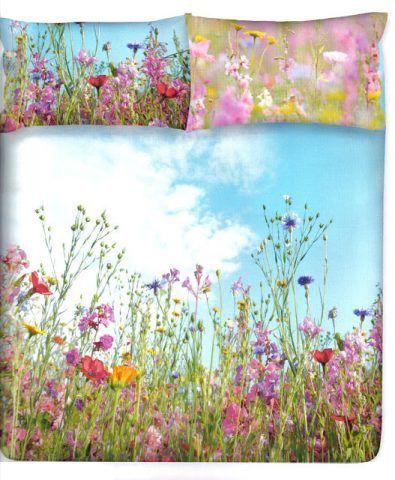 Un campo fiorito