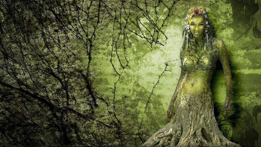 Uno spirito degli alberi, una Driade