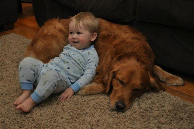 foto bambini animali07