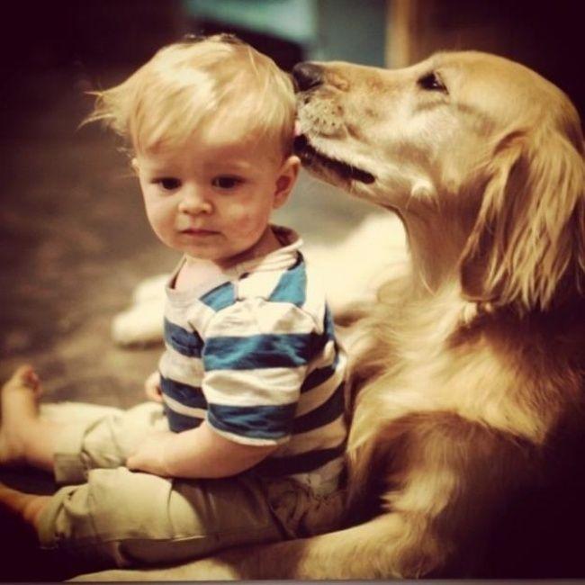 foto bambini animali08